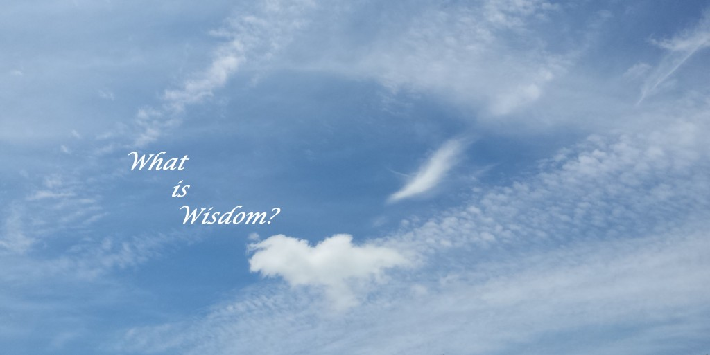What is Wisdom