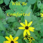 You Will Be Comforted
